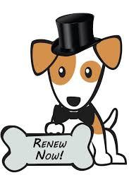 Dog License Renew Now Image