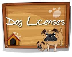 Dog Licenses image
