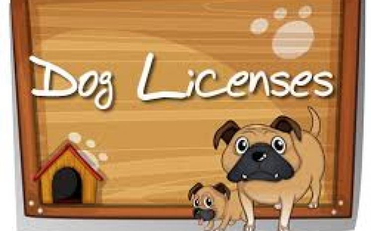 dog license dog house image